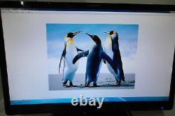 LOT-2 Planar PLL2410W 24 Widescreen LED LCD Monitor VGA DVI 1080p FD (NO STAND)
