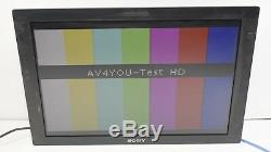 Sony 24 LCD Monitor LMD-2451W High Grade Multi-Format with BKM-243HS (no stand) #2
